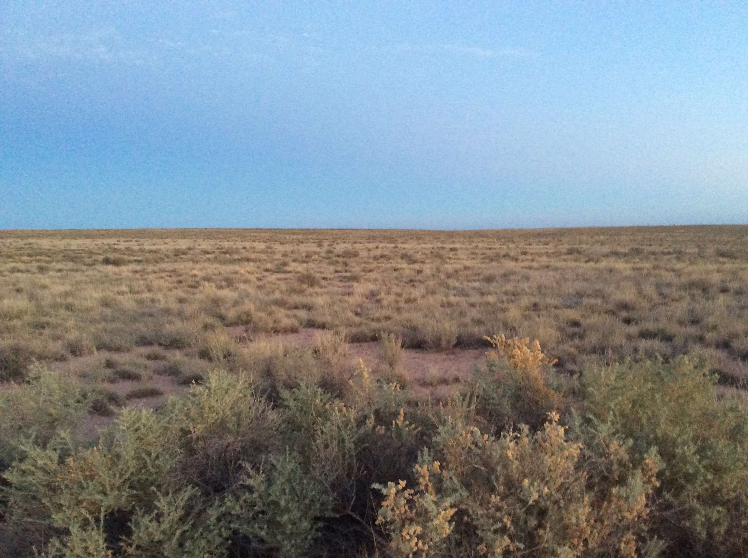 Photo of the plains