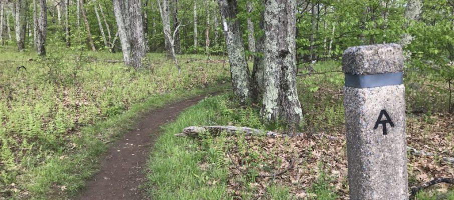 Photo of Appalachian Trail. ©2019 www.JeffRyanAuthor.com
